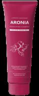 Шампунь для волос АРОНИЯ EVAS Pedison Institute-beaut Aronia Color Protection Shampoo 100мл: фото